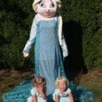 Fotografie 6. Pohádkový kostým Elsa – Ledové království / Frozen