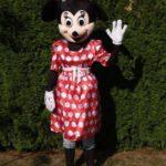 Fotografie 1. Pohádkový kostým Minnie Mouse