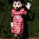 Fotografie 5. Pohádkový kostým Minnie Mouse