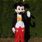 Fotografie 1. Pohádkový kostým Mickey Mouse