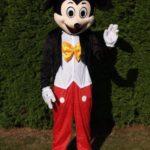 Fotografie 3. Pohádkový kostým Mickey Mouse