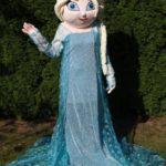 Fotografie 7. Pohádkový kostým Elsa – Ledové království / Frozen